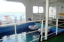 Internationale Frachtschiffreisen Pfeiffer - Von Seegang und Landgang - Pool