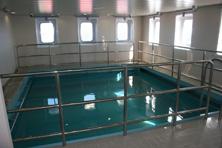 Internationale Frachtschiffreisen Pfeiffer - Von Seegang und Landgang - Pool 2